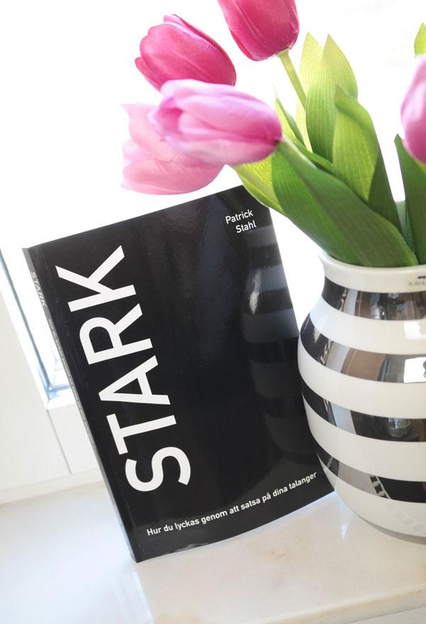 STARK - Hur du lyckas genom att satsa på dina talanger - patrick stahl