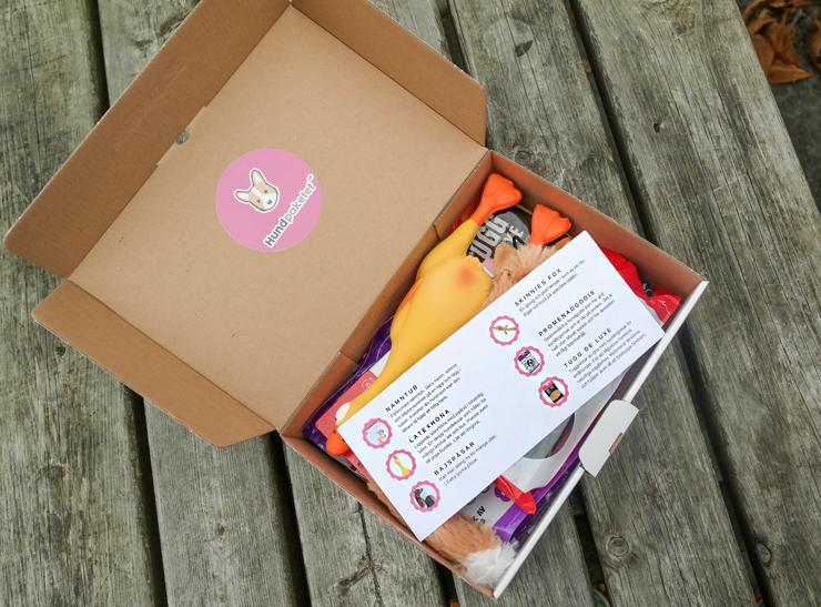 hundpaketet en månadsbox för vovvar