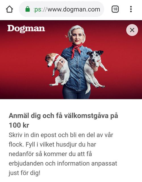 dogman nyhetsbrev