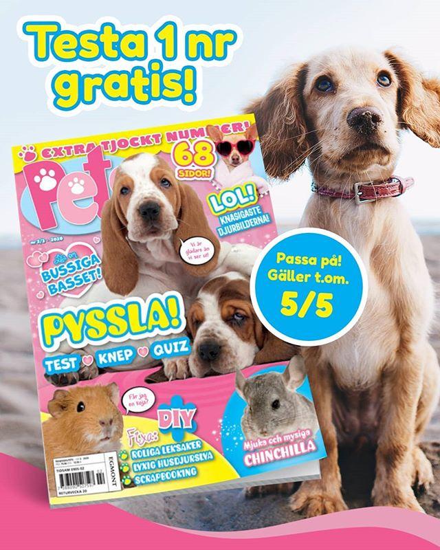 gratis nummer av tidningen pets - gratisprinsessan