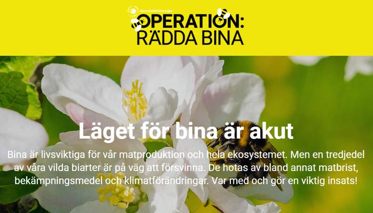 rädda bina - gratis fröpåse
